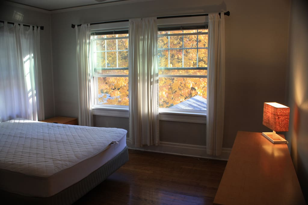 Your room has big windows and lots of sunlight.