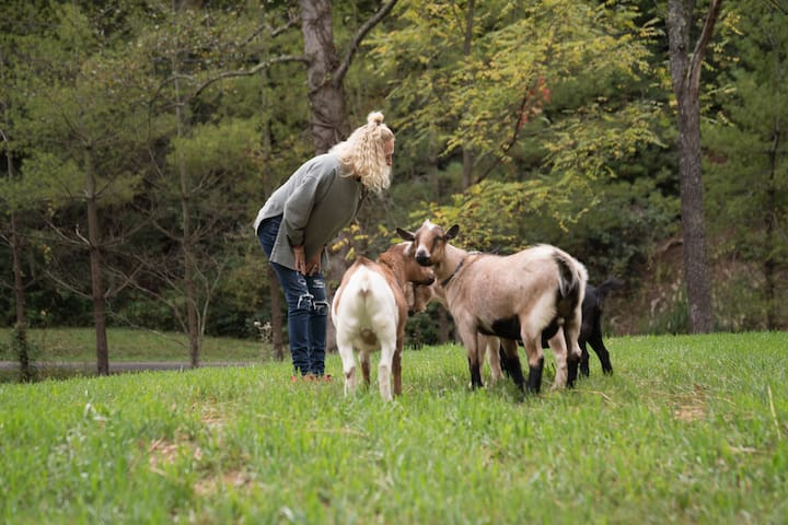Owner, Linda, with her goats