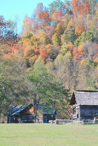 Located in the beautiful mountains of Southwest Virginia.