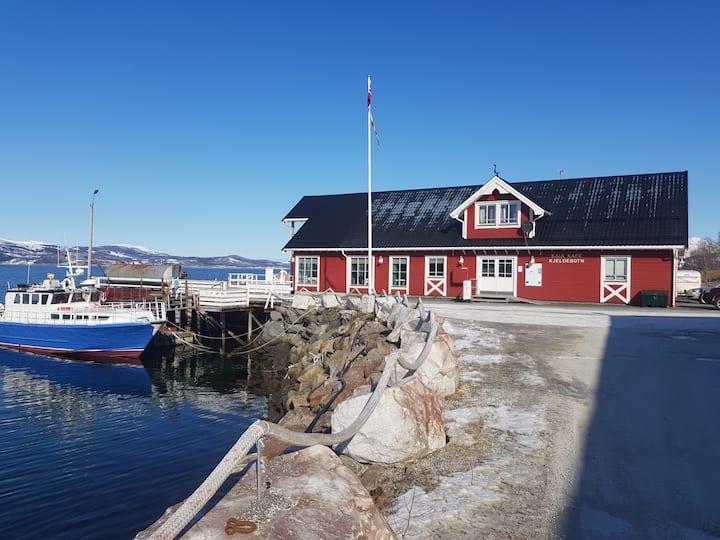 Seaside studio in beautiful Kjeldebotn, Narvik