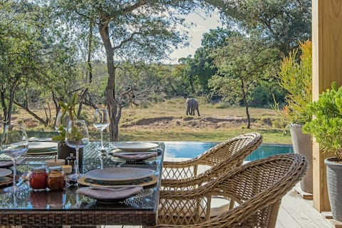 Thornybush River Lodge - River Lodge Suite 1