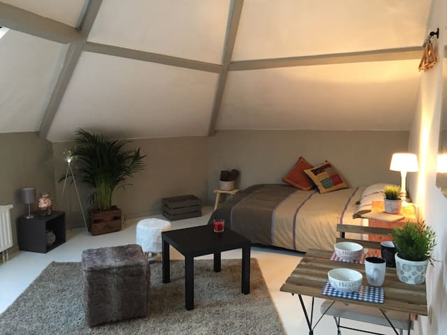 Studio Barrière / Parvis St Gilles - Saint-Gilles - Apartment