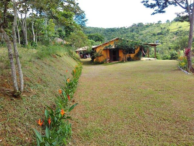 Hortelier - Simão Pereira - Cabin
