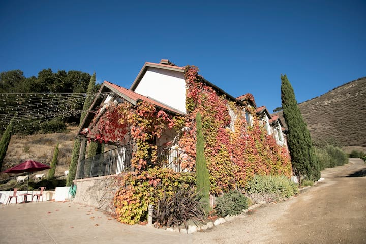WEEK & MONTH DISCOUNT - Beautiful Vineyard House