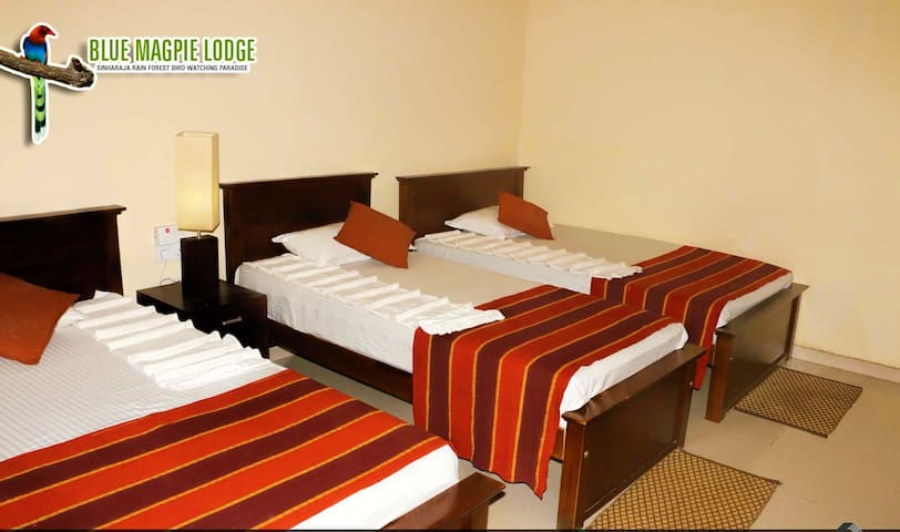 6 Deluxe rooms close to Sinharaja rain forest