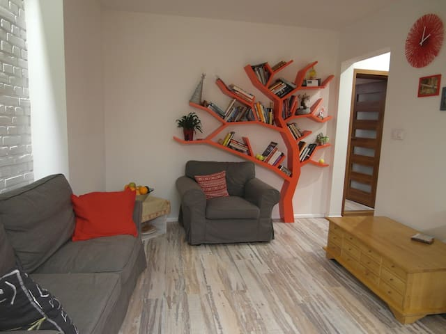 Comfortable room in quiet apartment - Breslavia - Apartamento