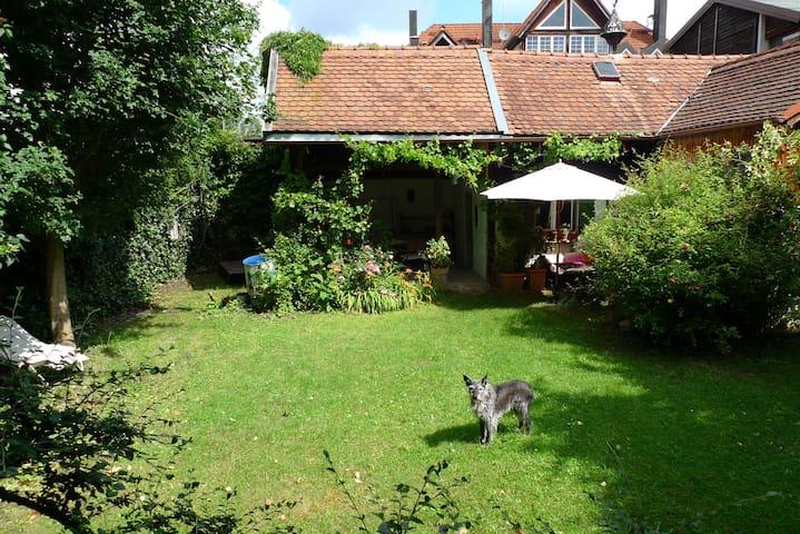 Garten mit Hund