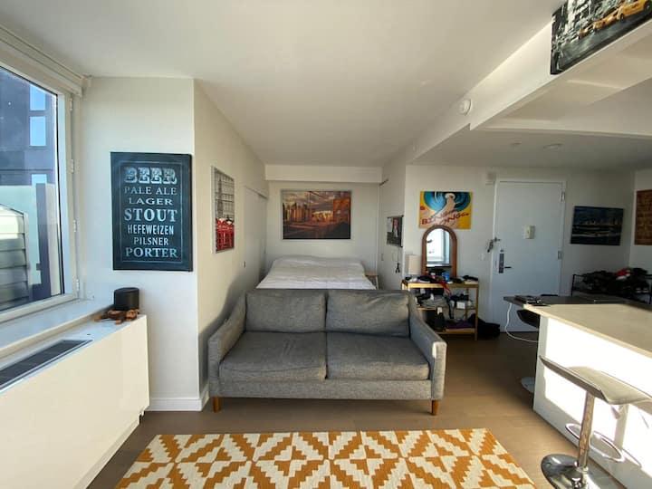 Studio Penthouse with privateTerrace  Williamsburg