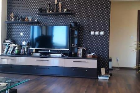 Refined and elegant apartment