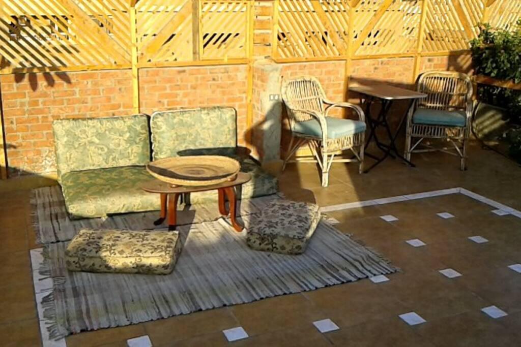 morning Sun on the roof-garden!