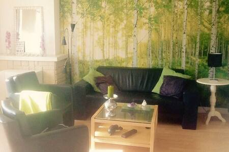 Sunny apartment in city center with park view! - Rotterdam - Appartement