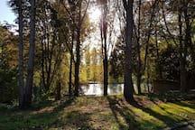 Loft vue magnifique, calme, Prox. Parc Expo Rennes