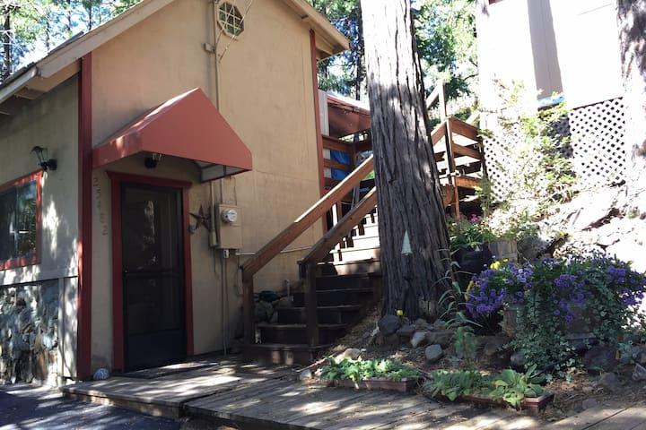 Tiny House ~ Mountain Retreat