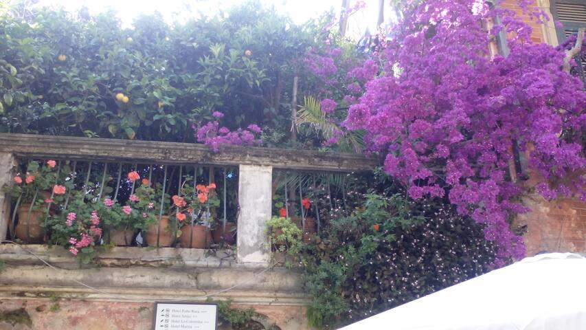 Casetta Pozzo - Monterosso al Mare - Apartamento