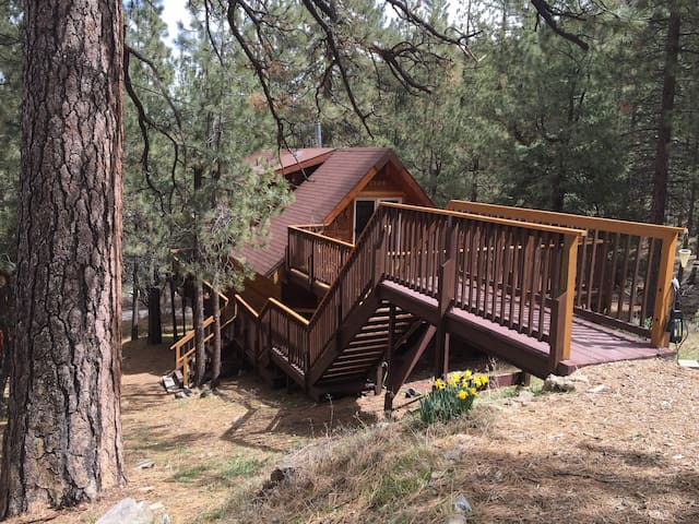 Log cabin 90 min. from LA - Pine Mountain Club - Huis