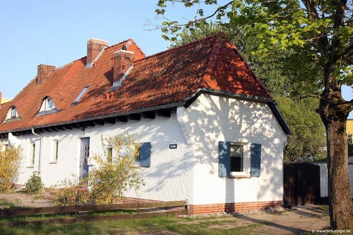 Ferienhaus für 6 Gäste mit 80m² in Zingst (127521)