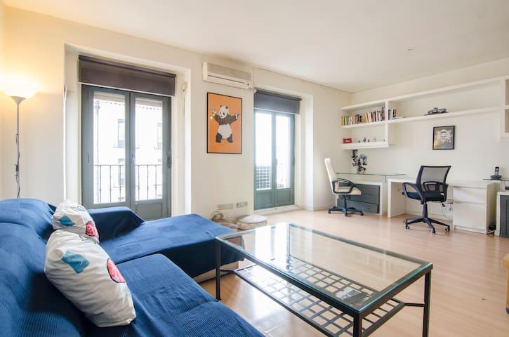 Beautiful & bright 1BD apartment -  LA LATINA