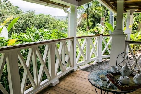 Hacienda Horizonte/100acre Coffee Plantation/River - Utuado - 小木屋