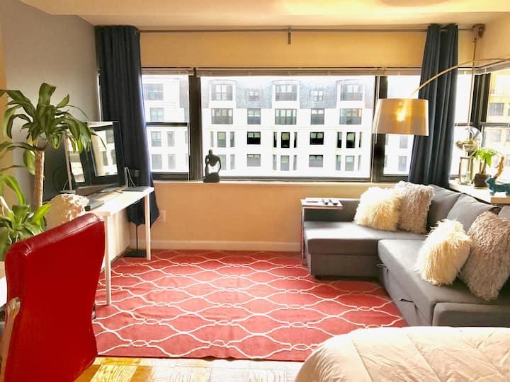 Penthouse near George Washington University