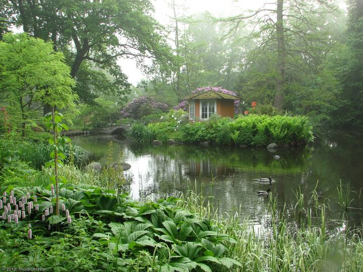 Ulriksdals botaniska trädgård - ateljévåning