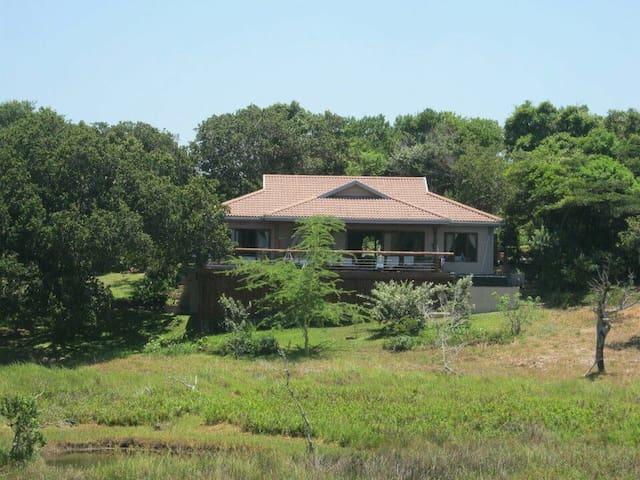 Beach, bush & tranquility! Executive family home!