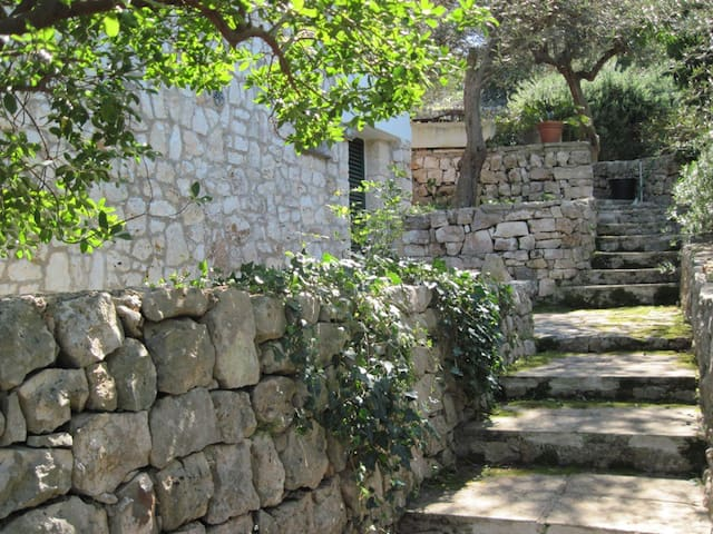 House in countryside + WIFI - Discesa del Monte - Maison