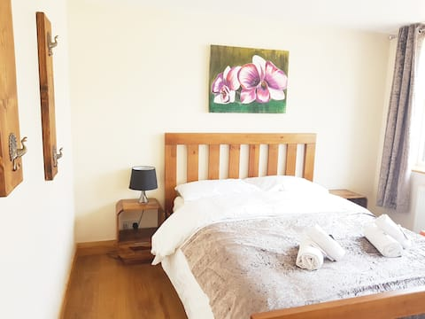 Katie modern one bed--Orchid