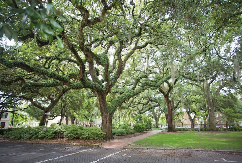 Chatham Square is one of only 22 original squares, and you'll have a perfect view of it's grandeur