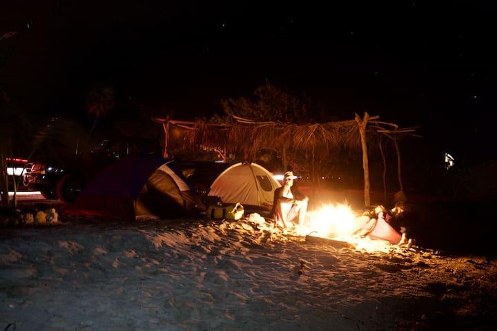 Bonfire, beach & stars expirience.