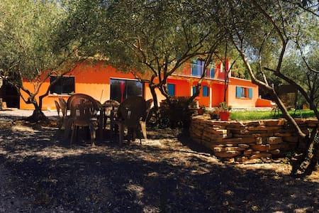 Entre chênes et oliviers au calme - Corconne