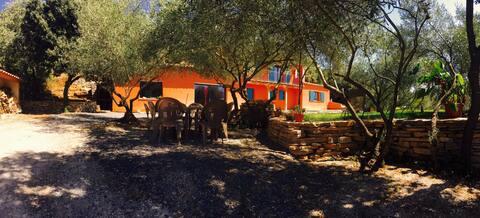 Entre chênes et oliviers au calme