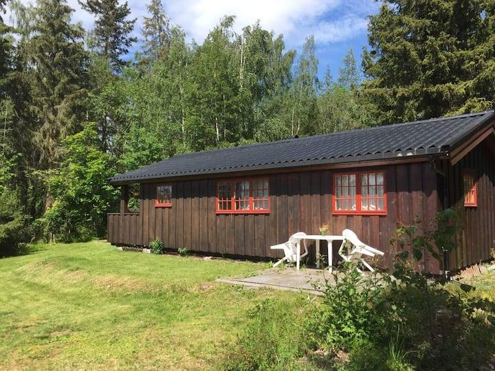 Hytte  på Jessnes (nære Hamar ), ved Mjøsa!