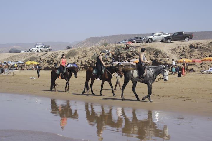 Explore Assersif Village near Agadir