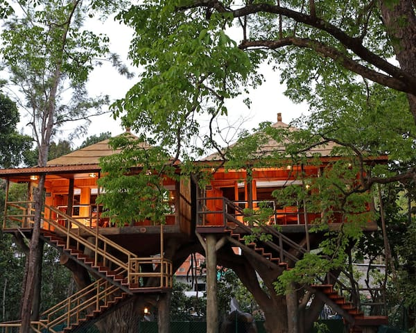 Modern & Luxurious Comfort Tree House Stay