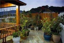 楼顶一角植物