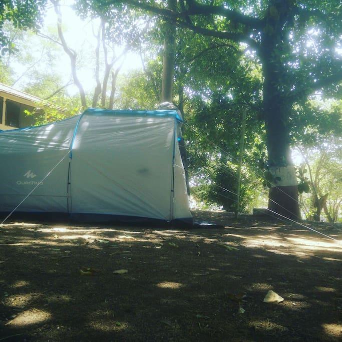 Tent's