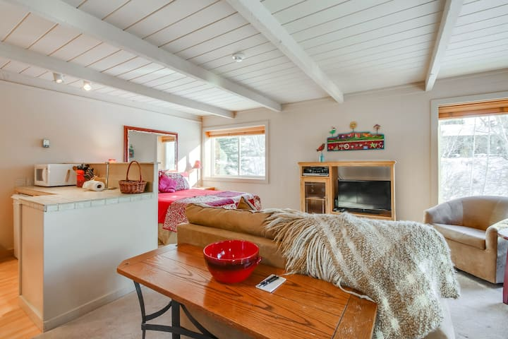Recently updated studio close to skiing w/ near by shuttle stop!