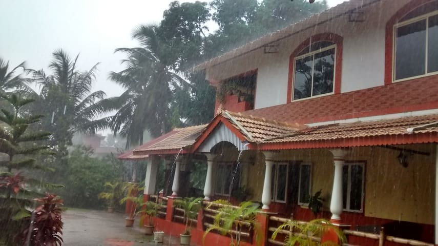 In the beautiful Mangalorean monsoon season.