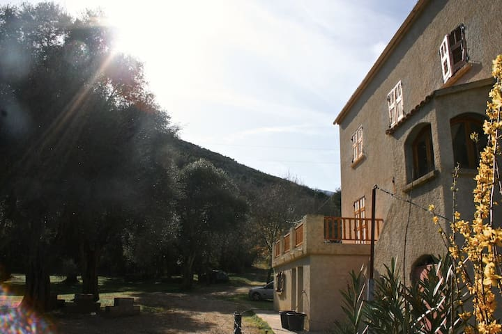 Grande Villa - Centre corse - Corte - House
