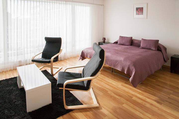 Studio 3 personnes moderne - Genebra - Apartamento