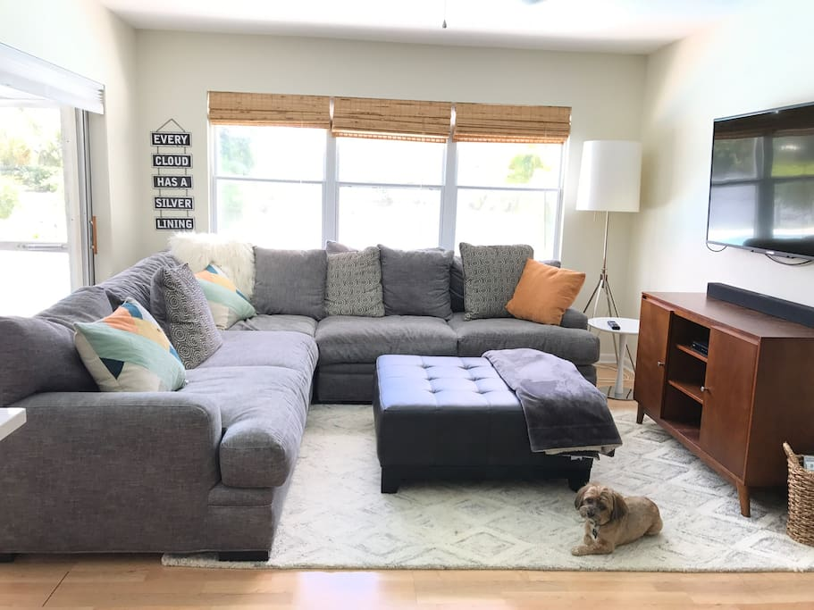 Living room for TV time and netflixs -Theo also likes TV
