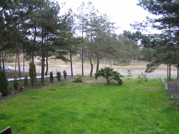 Cottage (2+2) surrounded with pine trees