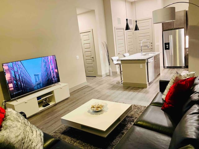 Highly comfortable&Spacious 1BR APT 10min to ATXDT