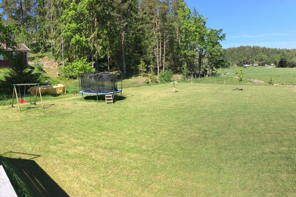Trädgård baksida