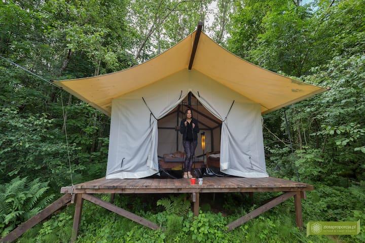 3. Tent Glamping klaukas