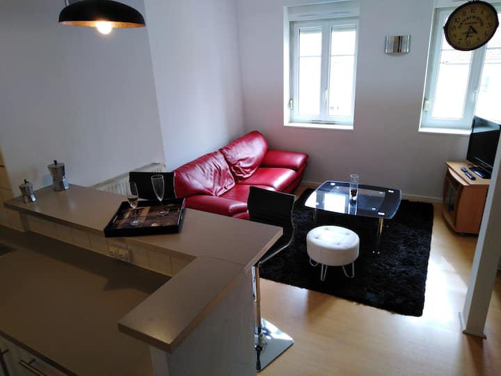 Appartement plein centre Nancy