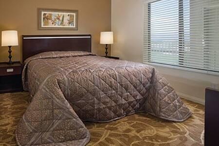 Desert Trip Luxury Resort - Studio - Apartamento