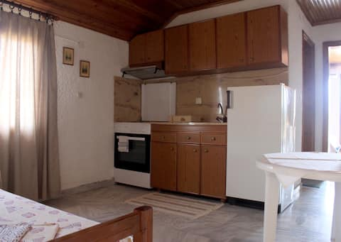 Basic Apartment's living room with a fully equipped kitchen and kitchenettes.