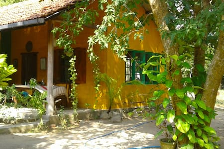 Villa of the Tree Frog – a delightful experience