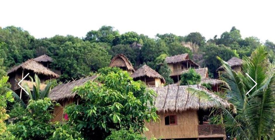 Wild bungalows
